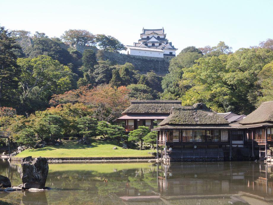 彦根城(庭園から望む天守)
