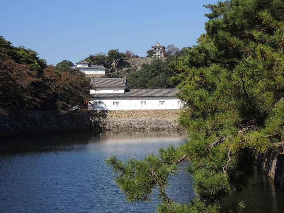 彦根城(お堀といろは松)